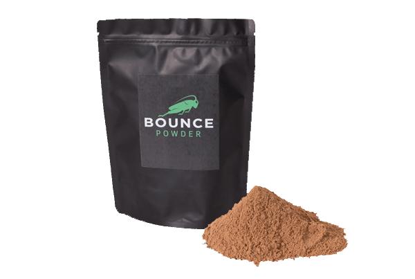 Bounce Powder Cricket Protein